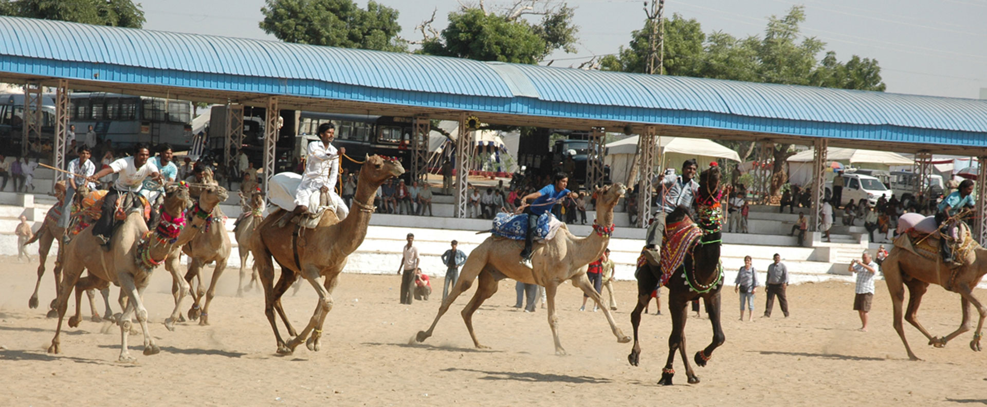Pushkar Camel Fair 11