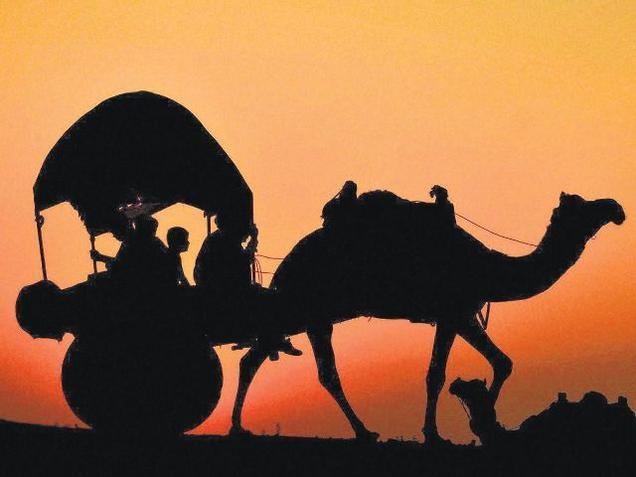 Camel Fair 13