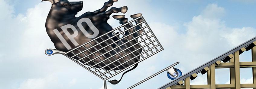 IPO मार्केट में अक्लमंदी के साथ करें निवेश, जानिए...