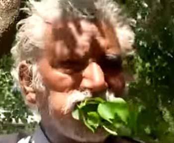 एक आदमी ऐसा भी जो 25 सालों से पत्तियां खाकर कर रहा गुजारा :