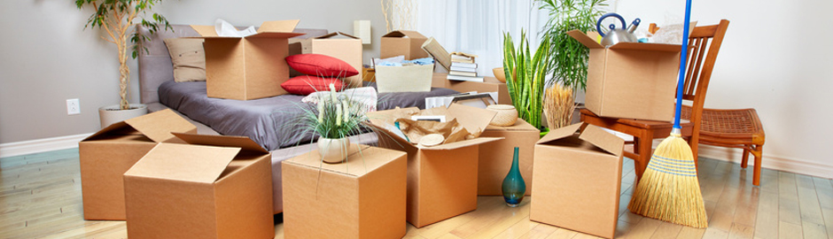Packers And Novers in chittorgarh, Movers And Packers in Chittorgarh