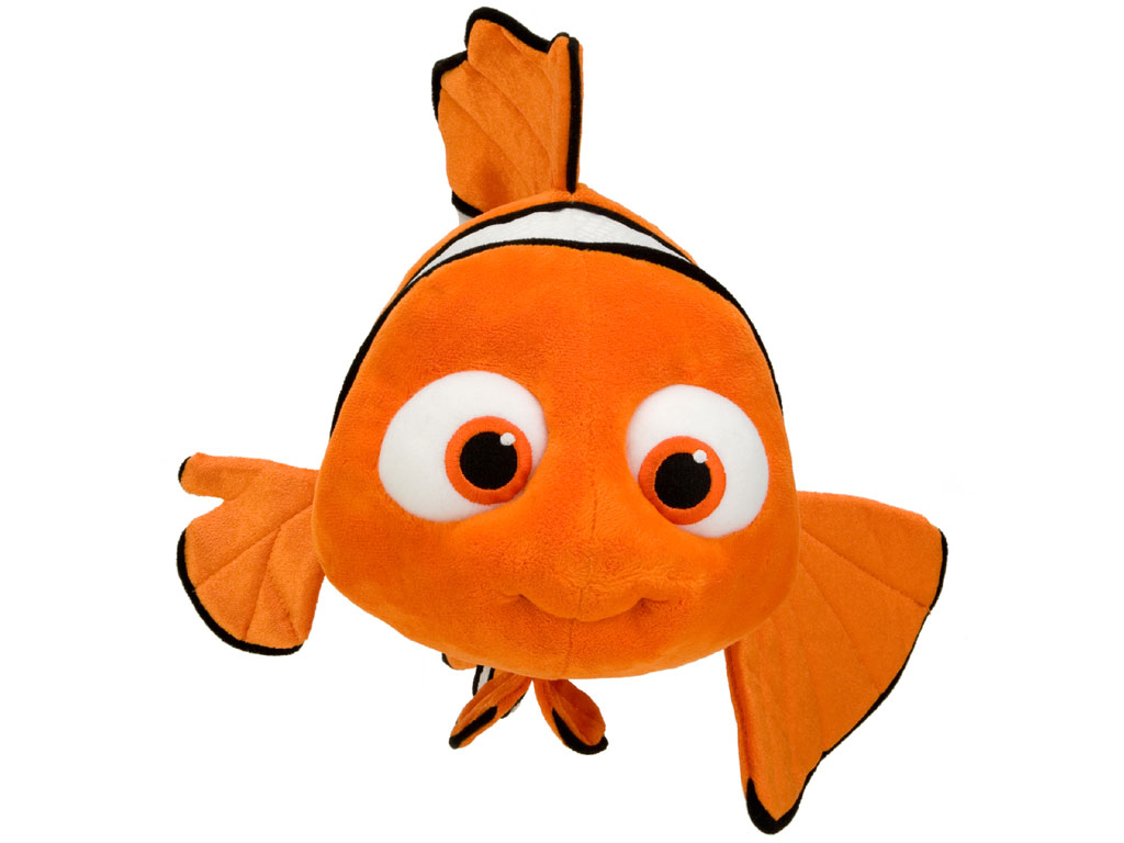 Small Size Fish