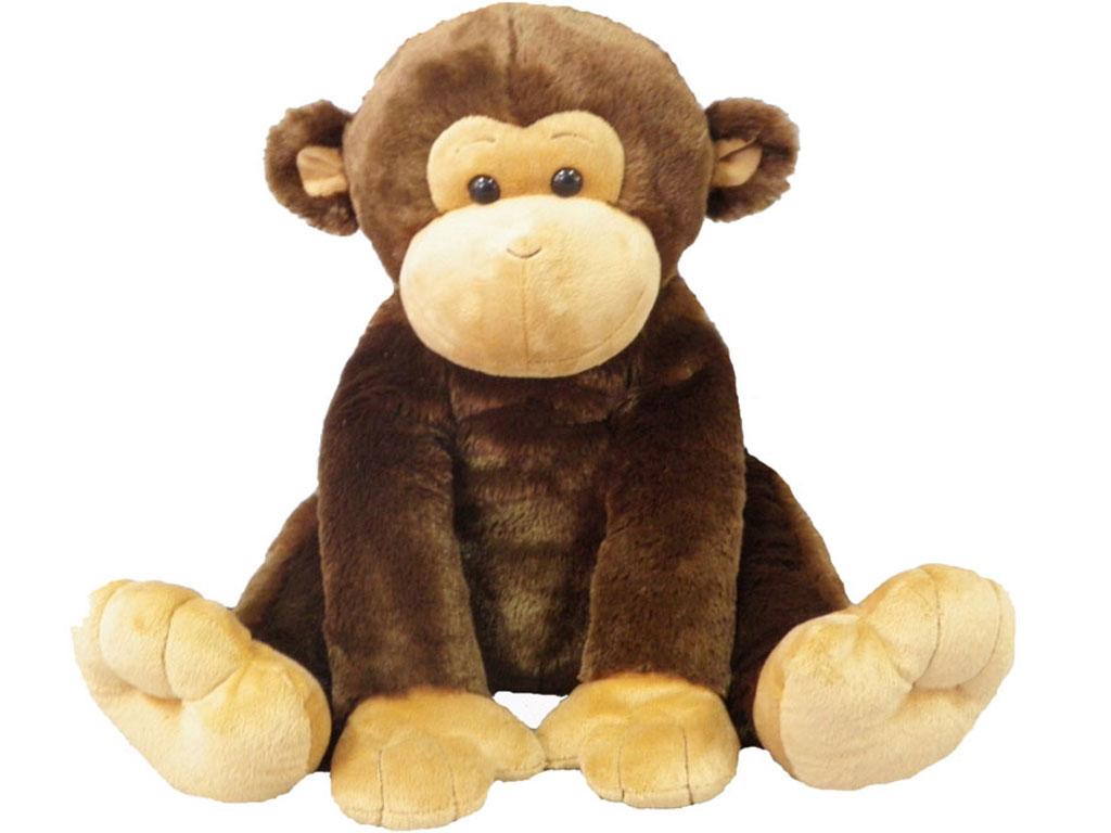 Small Size Monkey