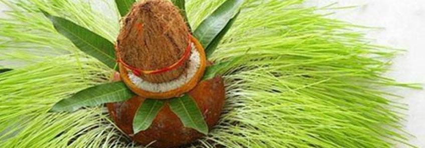 जानिए नवरात्री में जौ बोने का उद्देश्य?